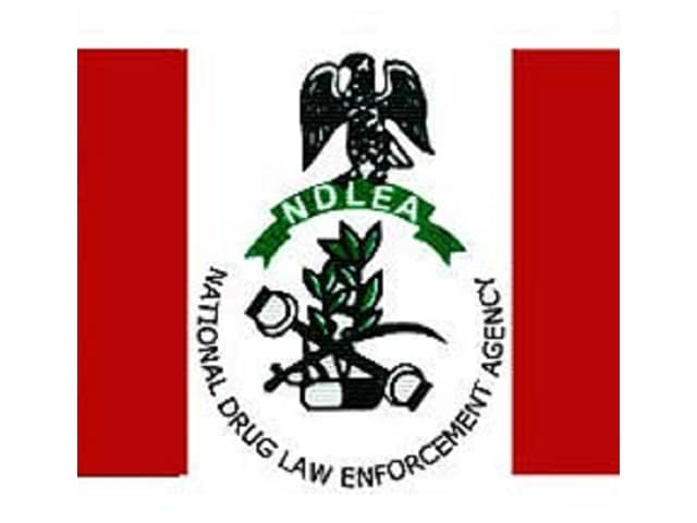 The National Drugs Law Enforcement Agency (NDLEA)